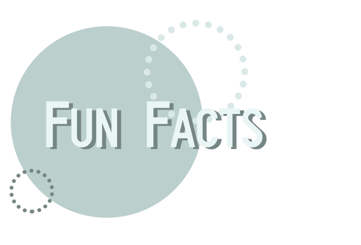 Fun Facts Header
