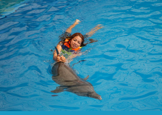 Taman Safari Prigen view of swimming with dolphins